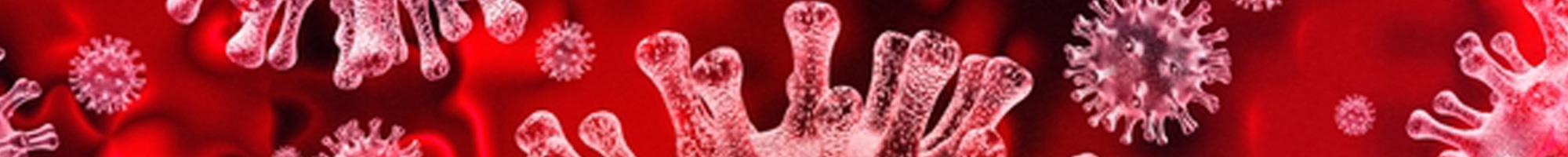 coronavirus_small